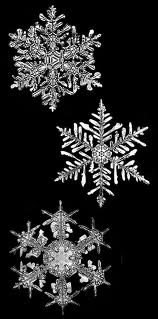 Snowflake of Joy